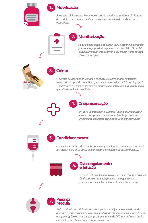 Infográfico Medicina Transfusional